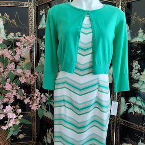 New Elegant Dress & Shrug